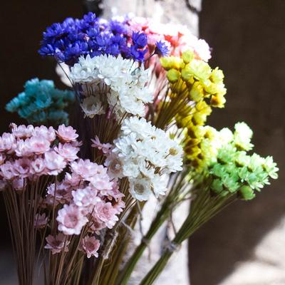 【盒子-鲜花图片】_盒子-鲜花图片大全