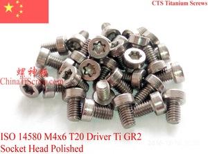 钛螺丝 M4x6 圆柱头T20内梅花 ISO 14580 ?#27454;袵R2
