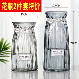 【兩只】玻璃花瓶小擺件歐式透明富貴竹水培綠蘿客廳干花大插花瓶