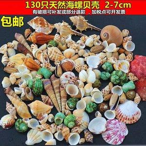 各?#20013;?#28023;螺贝壳 海洋瓶 微景观 漂流瓶幼儿园手工画DIY材料包装饰