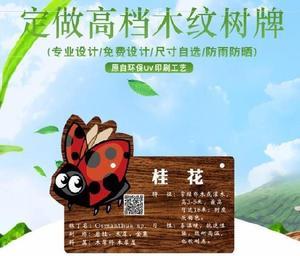 防腐木花草樹木介紹牌樹木認養牌廁所幼兒園動物園樹牌草地歐式