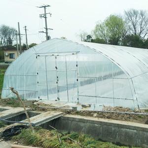 蔬菜塑料大棚钢结构庭院塑料温室番茄取暖韩式育苗花卉多肉小型家