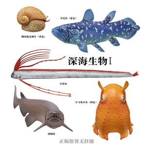 奇谭俱乐部正版 NTC立体?#25216;?深海生物矛尾鱼皇带鱼 扭蛋摆件收藏