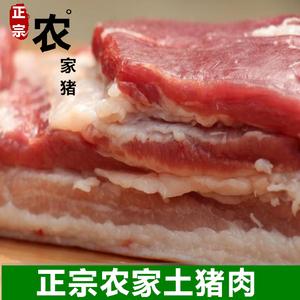 新鲜土猪肉 五花 正宗农家散养土猪排骨五花肉肘子猪肋排前腿肉