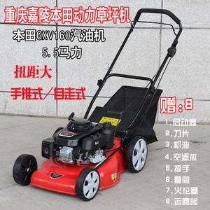 卡尔特汽油草坪机本田四冲程20寸手推式自走式剪草机除草机割草机