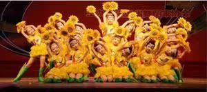 小荷风采花儿朵朵向太阳服装儿童花儿朵朵像太阳表演服舞蹈演出服