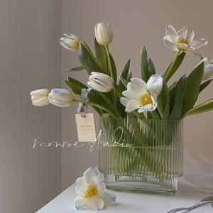MONROE梦鹿工作室大口径透明玻璃花瓶摆件客厅插花ins轻奢风鲜花