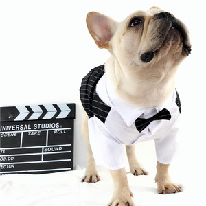 狗狗衣服西装礼服衬衫宠物结婚派对生日写真拍照巴哥法斗胖狗衣服