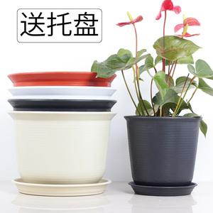 绿萝塑料特大号北欧风格花盆 多肉植物创意阳台圆形防陶瓷小花盆