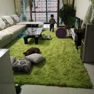 长毛绒地毯卧室满铺大块网红出租屋改造毛毛垫小阳台租房地面装饰