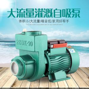 單相自吸泵家用太陽能增壓抽水機高揚程WZB上海凌鳴機電ZDK大流量