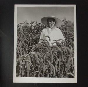 大幅原版黑白老照片 1958年毛主席在河南新乡七里营人民公社视察