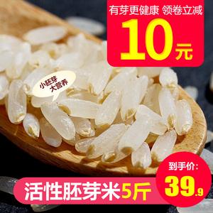 胚芽米婴儿营养大米5斤宝宝粥米五常胚芽米糙米新米儿童辅食全胚