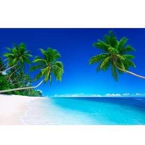 大海风景画海报定制作海边沙滩椰树客厅玄关走廊卧室装饰贴墙挂画