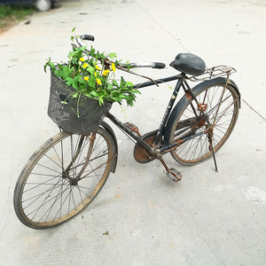 凤凰自行车老式怀旧图片