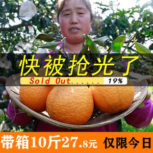 四川現摘新鮮丑橘青見柑橘10斤整箱當季水果包郵非耙耙柑