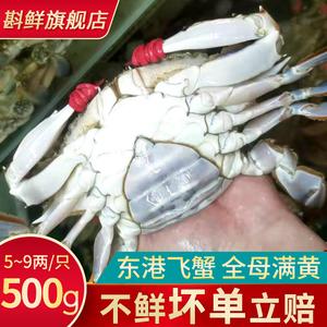 丹东野生飞蟹鲜活大母蟹东港全母满黄特大梭子蟹500g满三斤包顺丰