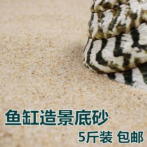 乌龟冬眠沙