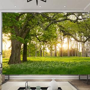 無縫5d自然風景綠色森林壁畫8d電視背景墻紙客廳沙發影視墻布大樹