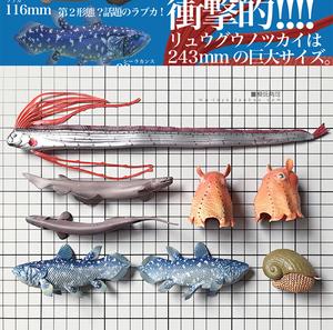 奇谭俱乐部 NTC立体?#25216;?深海生物腔棘鱼皇带鱼蜗牛 扭蛋摆件收藏