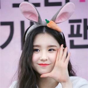 紫尚軒王俊凱同款發箍瘋狂動物城朱迪兔耳朵可愛胡蘿卜發卡超萌甜