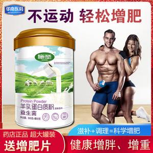 增肥增胖产品瘦人快速男女食品长肉增重蛋白营养粉非药茶奶粉调理
