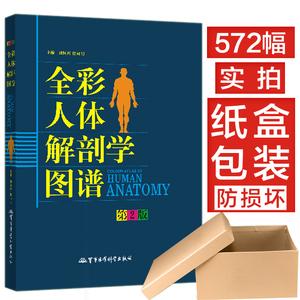 人体解剖彩色学图谱