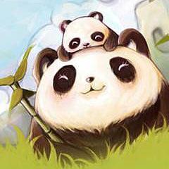 熊猫阿宝外贸童品
