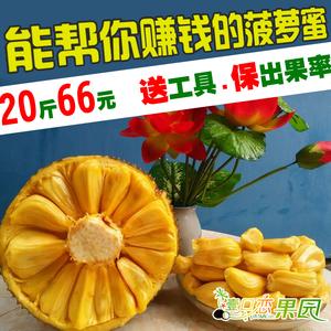 20斤包郵海南新鮮水果熱帶菠蘿蜜大樹菠蘿蜜40鮮波羅蜜假榴蓮