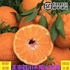 不知火丑橘 四川丹棱新鮮水果丑桔正宗丑八怪柑優級大果包郵