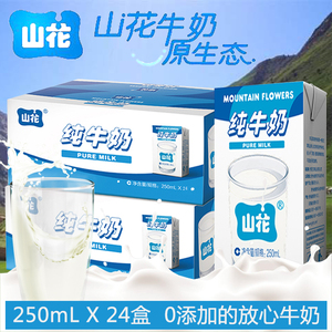 贵州山花纯牛奶整箱24盒批特价儿童成长补钙早餐孕妇低脂高钙牛奶