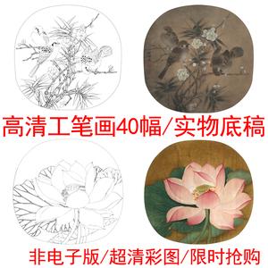 工笔画白描底稿素材宋画花鸟小品配彩图初学者高清实物打印稿40套