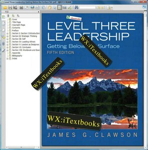 Level Three Leadership Getting Below the Surface 5th Edition