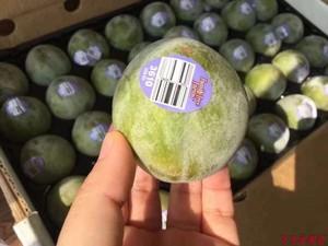 新鲜美国绿宝石恐龙蛋水果28个翡翠李美国进口李子布林顺丰包邮