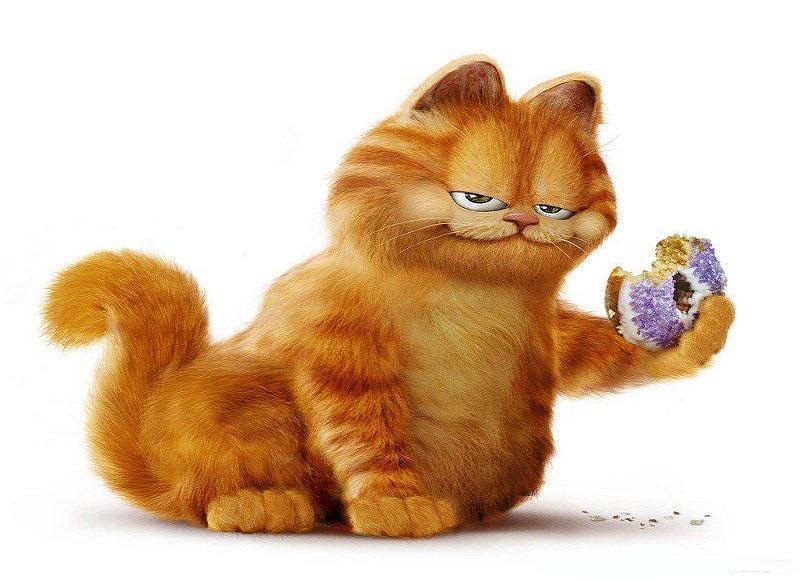 加菲猫啊啊啊啊啊
