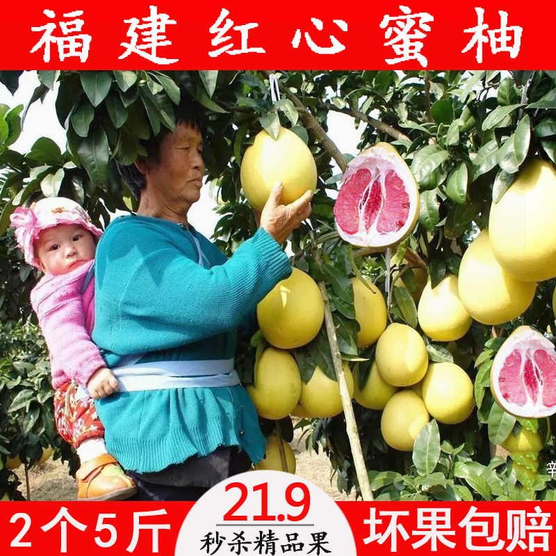 Купить Грейпфрут в Китае, в интернет магазине таобао на русском языке