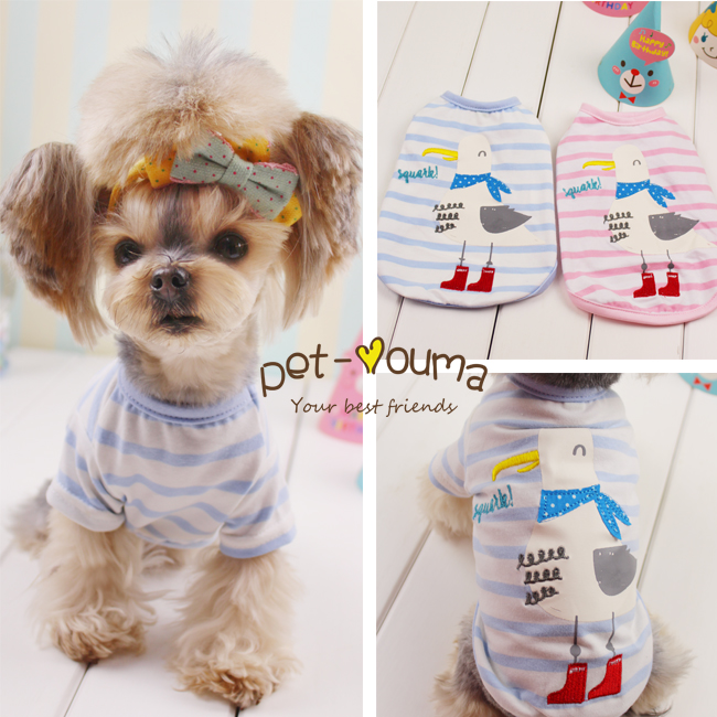 Dove shoes small cute pet dog cat bear Tactic shirt clothes ~ special Yorkshire