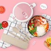 Best selling leak-proof multi-layer stainless steel insulated lunch box Japanese style cartoon single layer double round lunch box lunchbox