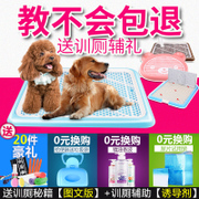 A large dog dog toilet Tactic automatic pet dog supplies Golden Bowl small dog shit urinal