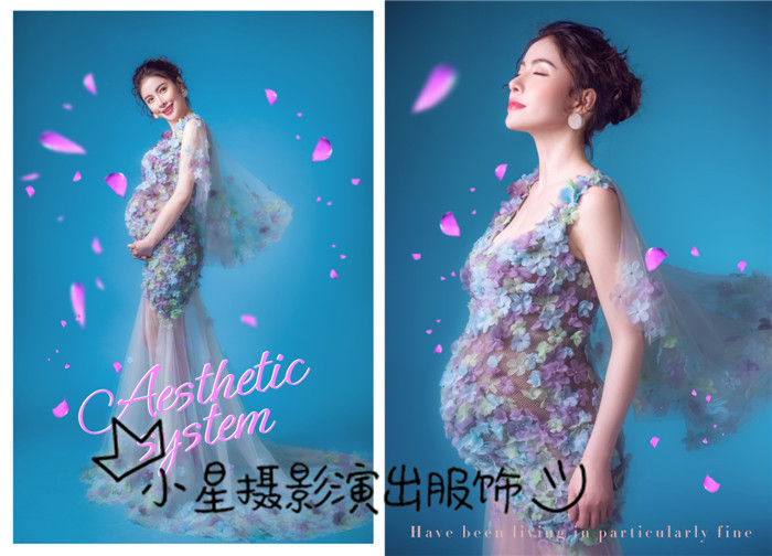 Photo studio pregnant women take pictures photography 2016 theme dress sexy perspective organza bitter fleabane bitter fleabane skirt of pregnant women