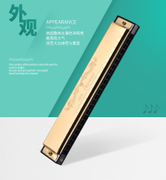 Environmental protection set of professional music instrument safety children 24 hole harmonica senior middle school students.