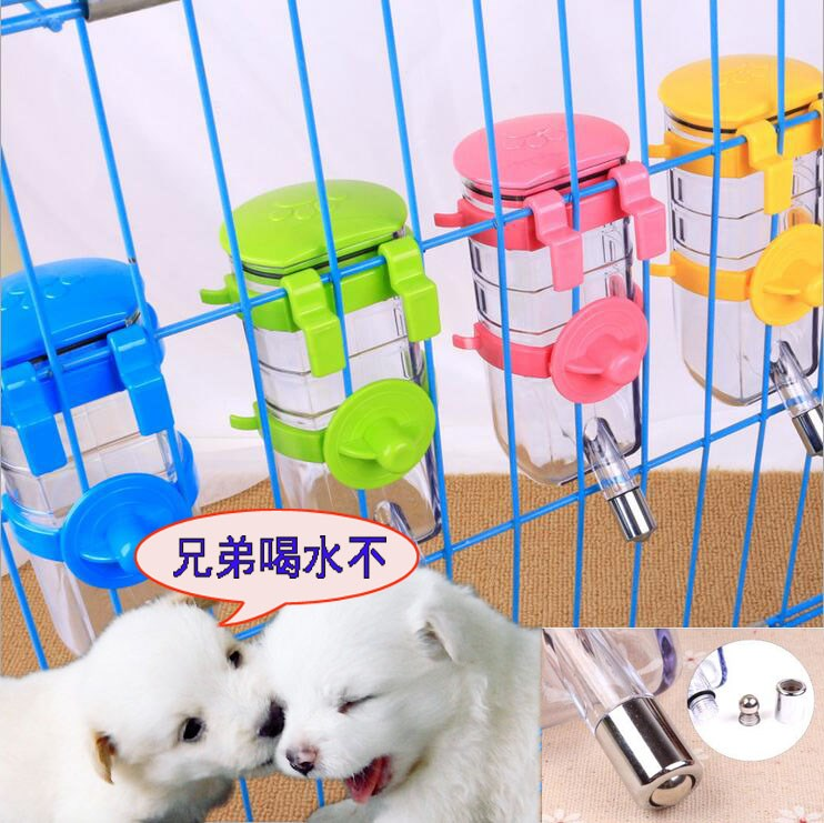 The dog is hanging water kettle tap automatic water feeder for pet drinking machine Teddy VIP Bichon drink