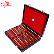 The area of shipping 10 genuine SW1020H-12TJ 20 sound holes Swan 12 tone harmonica gift box set