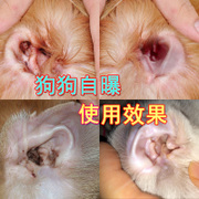 Ineffective delivery bag invalid ear drops ear oil ear mites Teddy pets ear wash Cat ears cleaning fluid