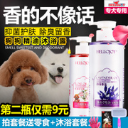 The dog wash Teddy pet bath products sterilization deodorant Bichon acaricidal sterilization shampoo golden white