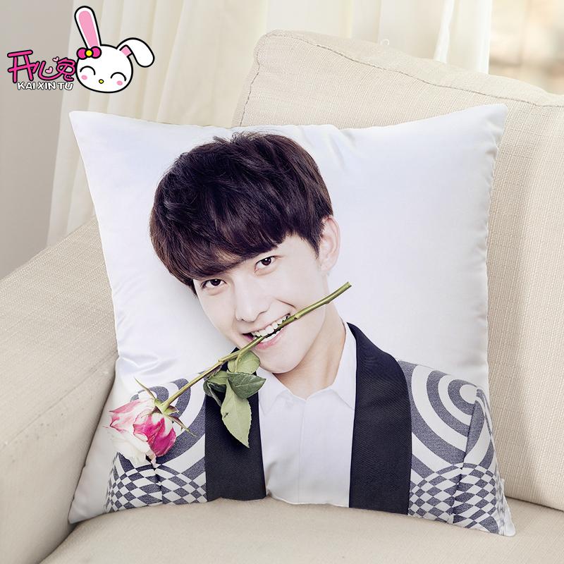 杨洋抱枕 DIY定制微微一笑很倾城明星创意周边照片定做女生日礼物