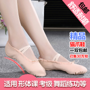 Adult children dance shoes soft soled ballet shoes pink cat claw girls dancing shoes canvas Yoga Kungfu shoes shoes