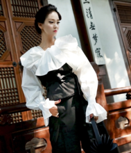 Korea genuine official website Dint- straight high-grade occupation white-collar OL star design blouse