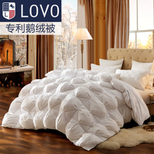 Lovo Carolina textile product life duvet warm bedding thickening was the core white goose down quilt