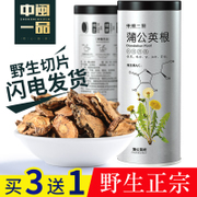 220g1 Changbai Mountain natural wild dandelion tea pot dandelion mother Ding with root of the super pure